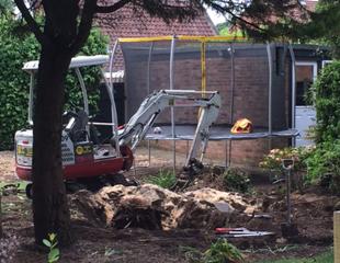 Rob Roy Trees image 10